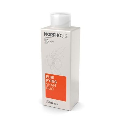 Purifying Shampoo 250ml Morphosis FRAMESI