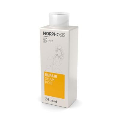 Repair Shampoo 250ml Morphosis FRAMESI