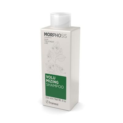 Volumizing Shampoo 250ml Morphosis FRAMESI