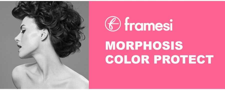 FRAMESI MORPHOSIS COLOR PROTECT protective of color