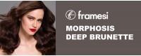 Framesi Morphosis Brunette the best care for your brown hair
